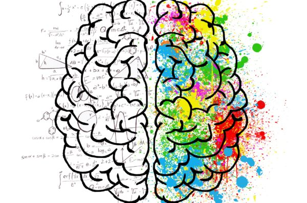 Drawing of a brain with the right hemisphere in black and white and the left hemisphere with multiple bright colors filled in.